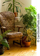 Cozy corner at home - Cozy armchair in warm morning lights...