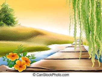 Footbridge & meadow