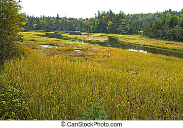 Wetlands, NS - Wetlands, Cape Breton Island, Nova Scotia,...