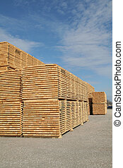 Lumber - Piles of pine planks stacked for drying