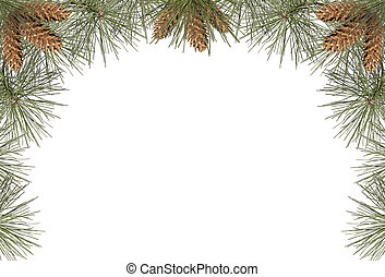 Pine Frame - a frame of pine needles and pine cones