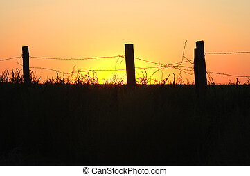 Barbwire Sunset - Broken barbwire fence landscape.
