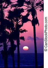 Pink Sky Sunset At Venice Beach California USA - The sun...