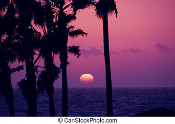 Pink Sky Sunset Venice Beach California USA - Pink Sky...