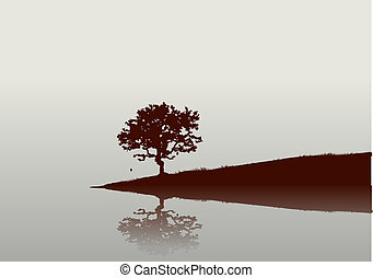 Reflections - Silhouette of a tree and Reflections on the...