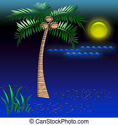 tropic night - beach vacation palm tree on sandy beach