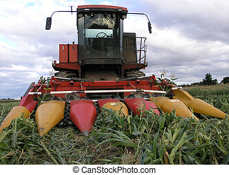 Sweetcorn Harvester - A sweetcorn harvester parked in a...