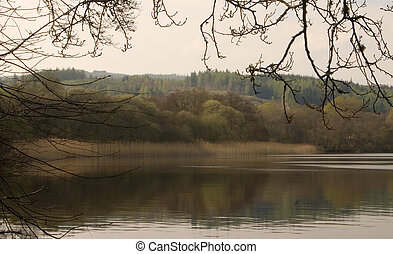 Peace on the loch - gentle evening light falls on a peaceful...