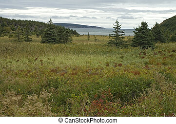 Coastal Scenics near Broad Cove, Cape Breton Island, Nova...