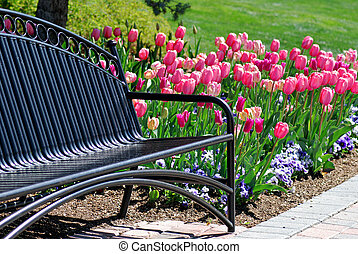Park Bench - A metal black bench with pink tulips and green...