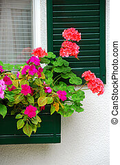 House flower box - Flower box on the house window with...