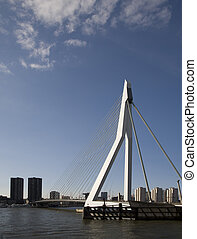 Suspension bridge 17 - Erasmus Bridge in Rotterdam Holland