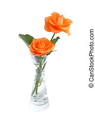 Bouquet of orange roses in a vase over white