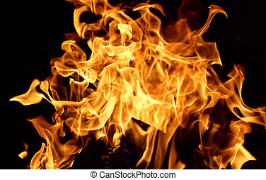Burn - Dancing flames against a black background.