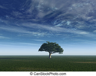 peaceful - lonely tree on a field with blue sky - 3d...