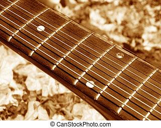 Sepia Fretboard - A beautiful fretboard of an accoustic...