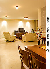 living room 1 - living room suite of soft furniture interior...