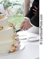 Cutting the cake - A wonderful wedding cake with the bride...