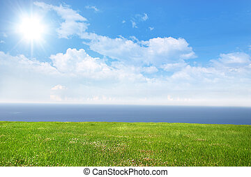 Sunny Day - Fresh green grass on bright sunny day and sea in...