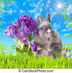 Easter bunny with bouquet