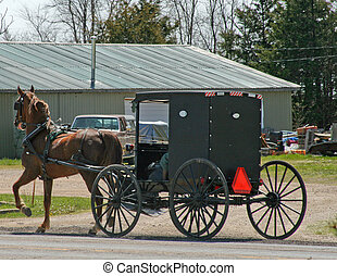 Rural Horse and Buggy - Mennonite / Amish driver with horse...