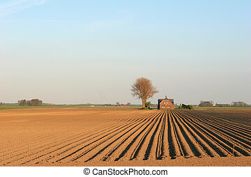 Ploughed field - field in holland