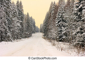 The winter road - The road in winter forest at sunset