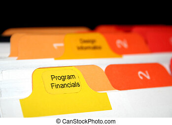 Program Financials - program financials tabs in a bussiness...