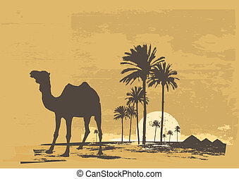 sunset - illustration of sunset in african desert. Camel and...