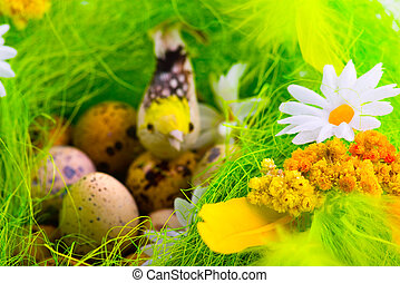 Nest with eggs and birds among flowers
