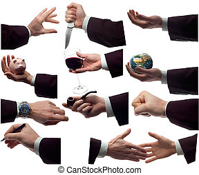 hands - multiple business hands isolated on white background