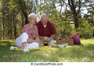 Having a picnic - Elderly couple enjoying a leisure pic nic...