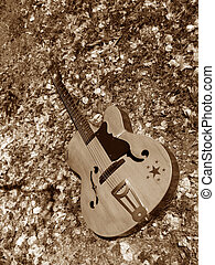 Vintage Guitar - A vintage accoustic guitar in garden