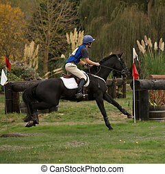 Out of the Ditch - A horse jumping out of the ditch during a...
