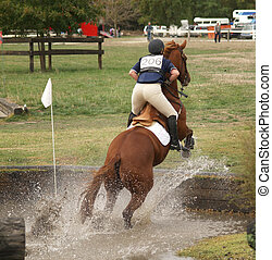 Up in the Stirrups - A horse jumping out of the water...