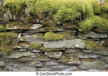 moss covered old stone wall