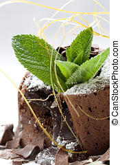 Chocolate dessert - Delicious chocolate dessert decorated...