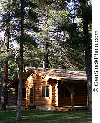 Log Home - Log home in a pine forest of the Colorado Rockies
