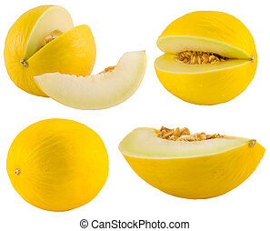 yellow melons collection - the yellow melons collection...