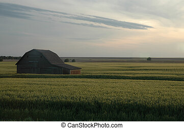 Midwestern Landscape - Landscape scene from Kansas showing a...