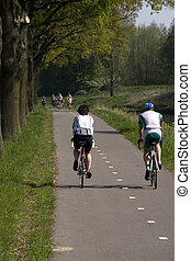 bicycle - two cyclists pedaling on a cycling lane