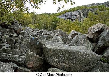 Precipice Trail, Acadia Nat. Park, ME