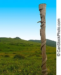 wooden pagan idol  against green field and blue sky