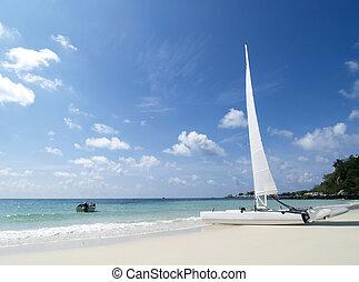 Catamaran on the beach - Catamaran sailboat on a white,...