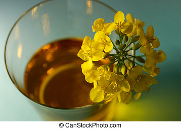 Canola blossoms and �l - Close-up of canola blossoms and...