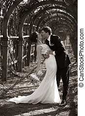 Newly-married couple - The groom and the bride walk in park...