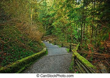 never ending trails - cliff park, trails, bc, canada