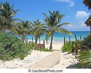 Walk path to a tropical white beach and blue sea, Tulum,...