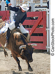 Bull Rider - A cowboy riding a bull in an arena during a...