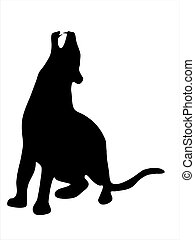 Black panther - Illustration of wild animal, family of cats